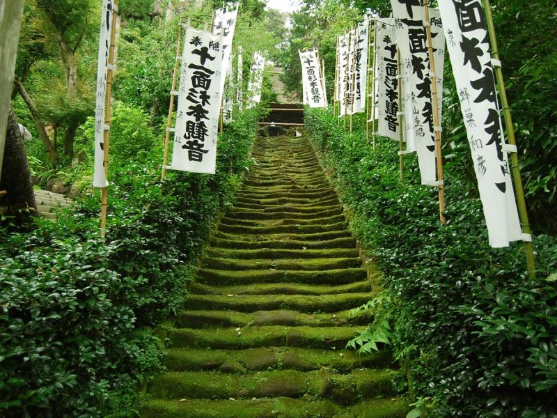 鎌倉杉本寺がなぜ苔寺と呼ばれているか?